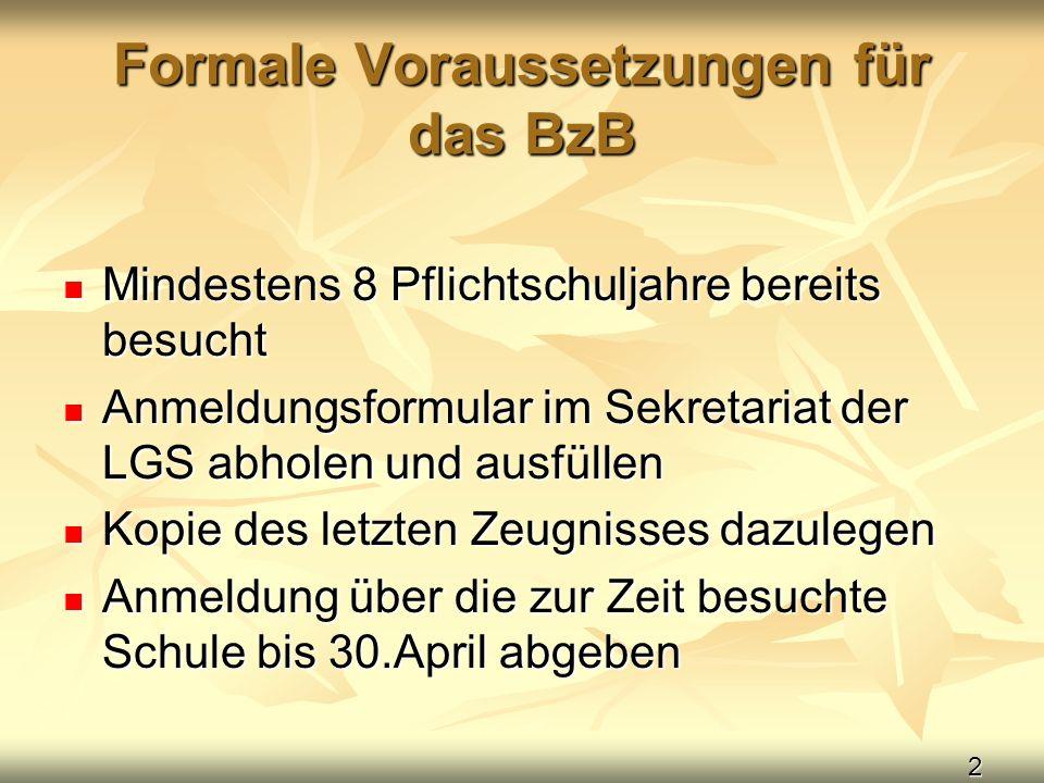 Formale Voraussetzungen für das BzB