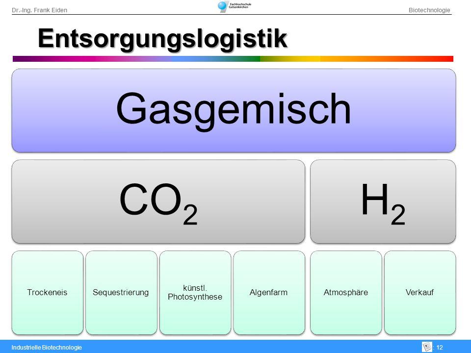 Gasgemisch CO2 H2 Entsorgungslogistik Trockeneis Sequestrierung