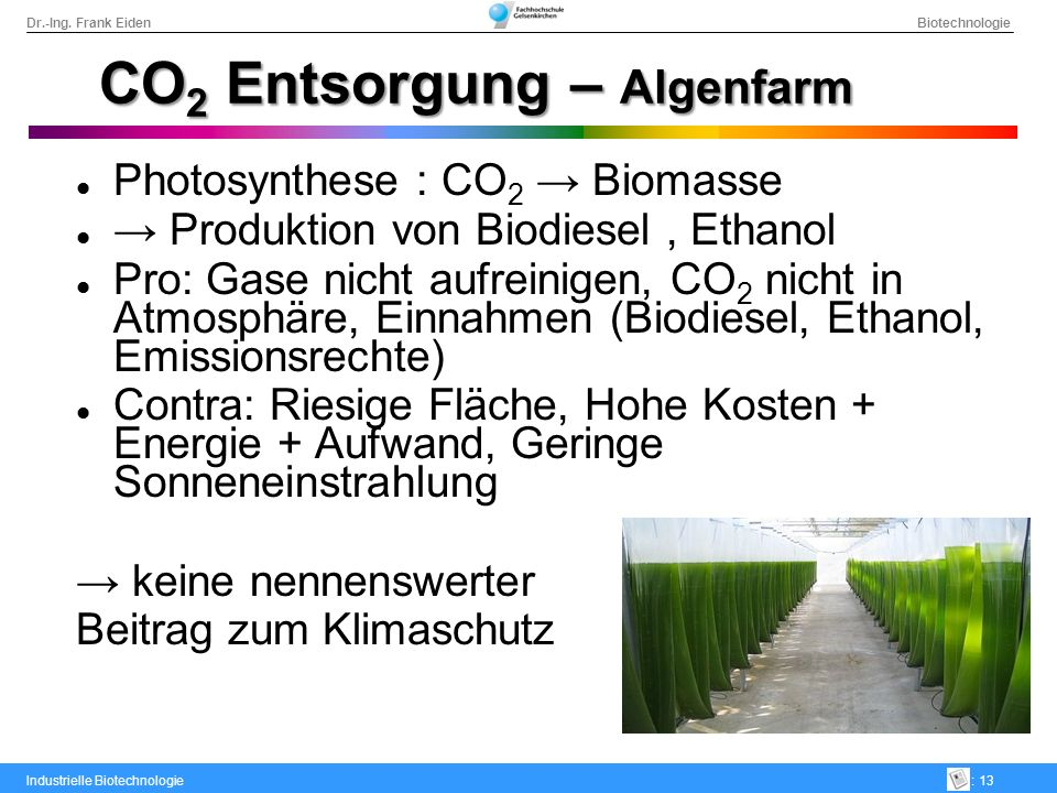 CO2 Entsorgung – Algenfarm