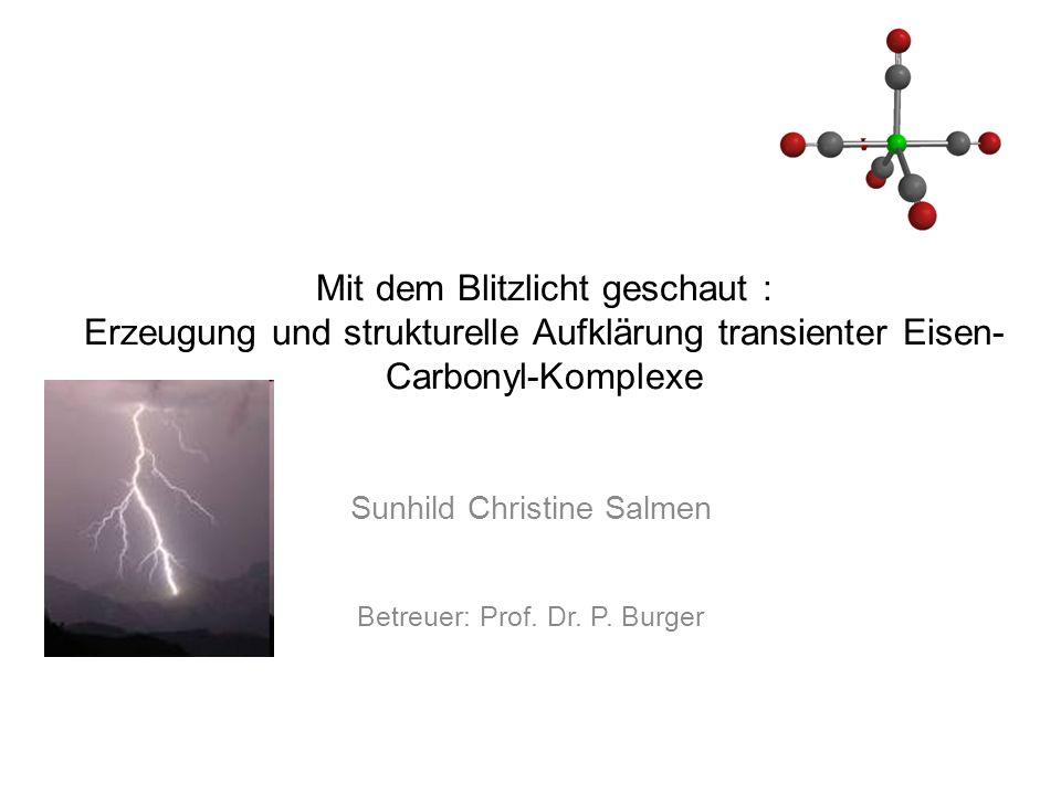 Sunhild Christine Salmen Betreuer: Prof. Dr. P. Burger