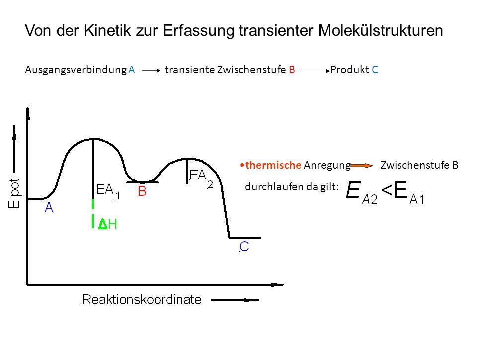 Von der Kinetik zur Erfassung transienter Molekülstrukturen