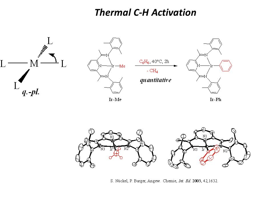 Thermal C-H Activation
