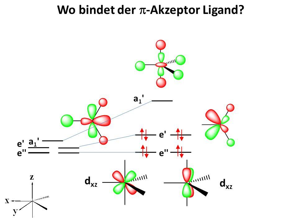 Wo bindet der p-Akzeptor Ligand