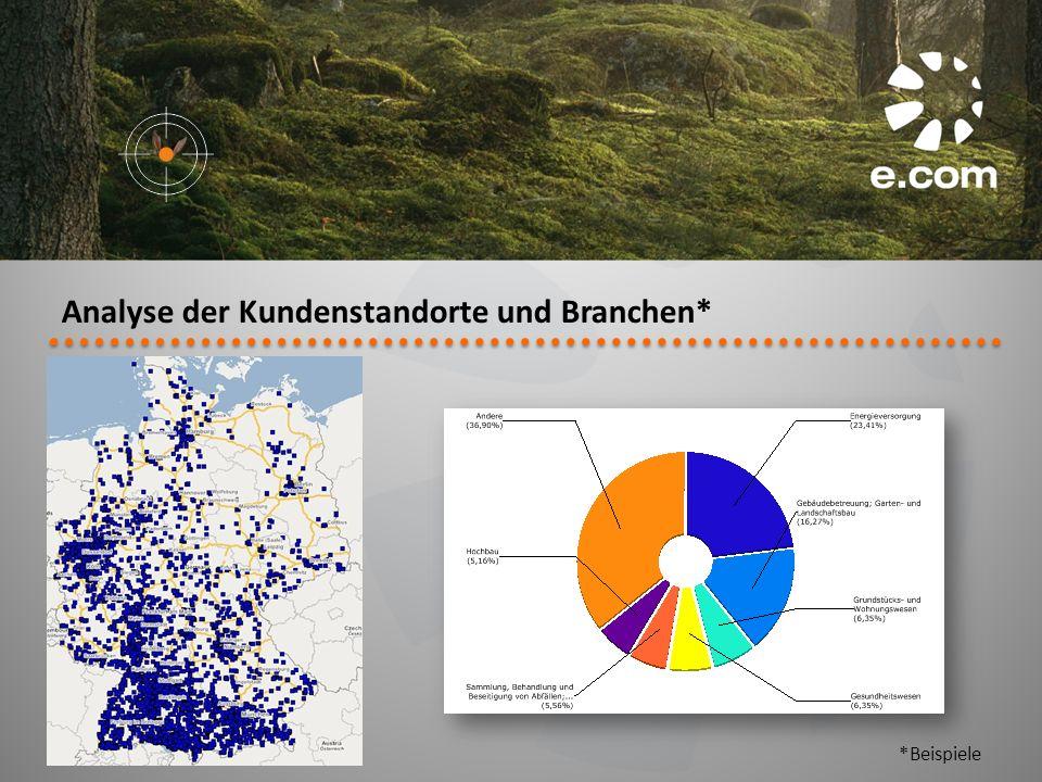 Analyse der Kundenstandorte und Branchen*