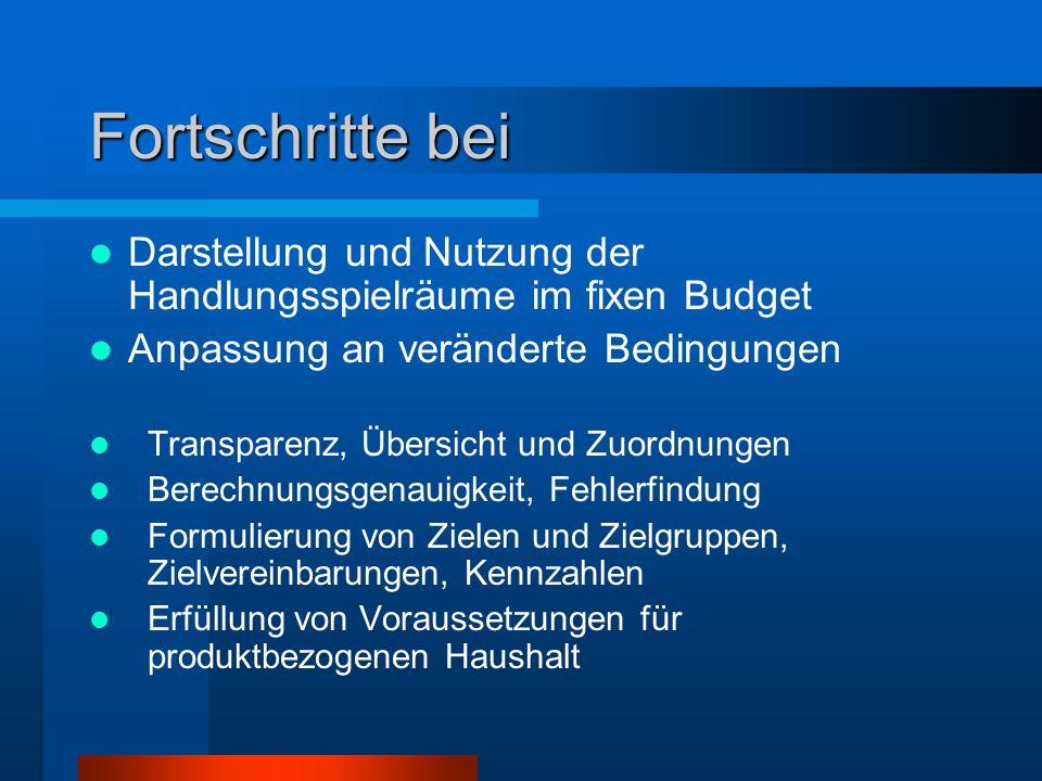 Fortschritte bei Darstellung und Nutzung der Handlungsspielräume im fixen Budget. Anpassung an veränderte Bedingungen.