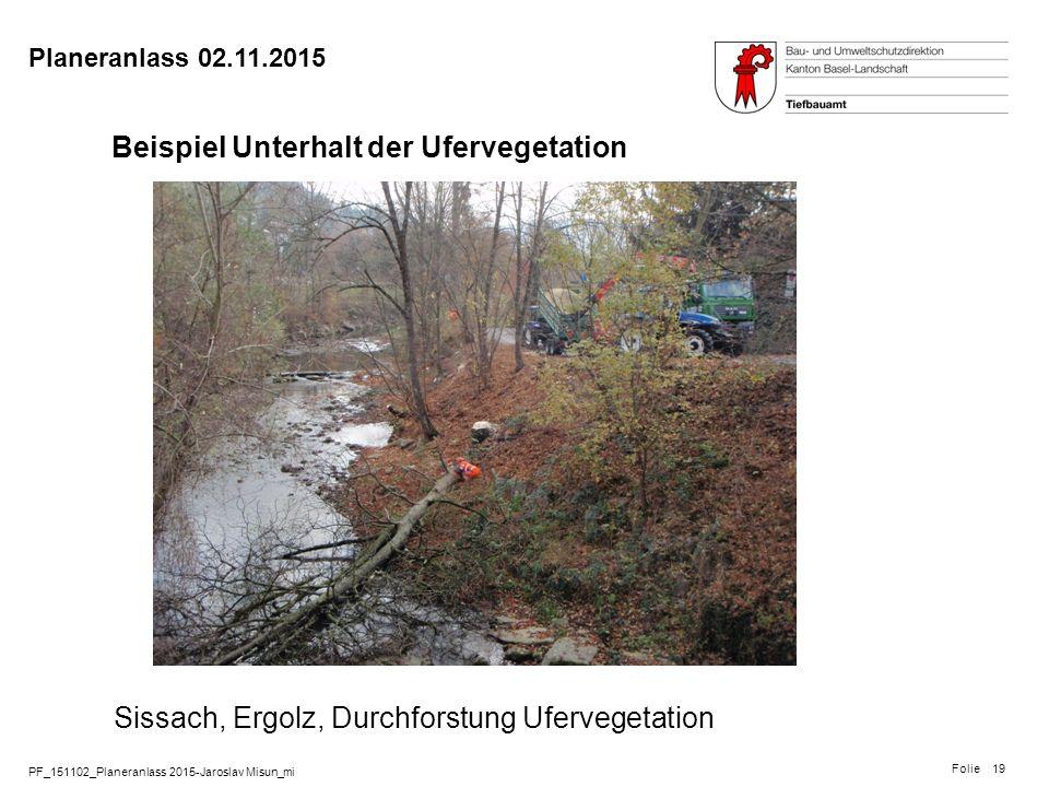 Beispiel Unterhalt der Ufervegetation