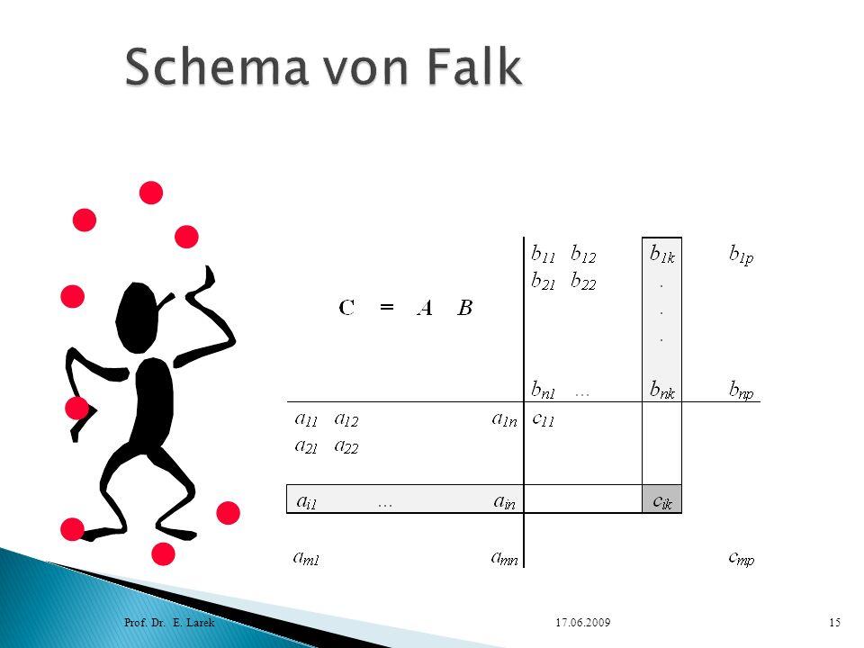 Schema von Falk Prof. Dr. E. Larek 17.06.2009