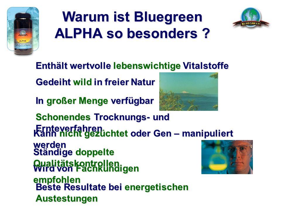 Warum ist Bluegreen ALPHA so besonders