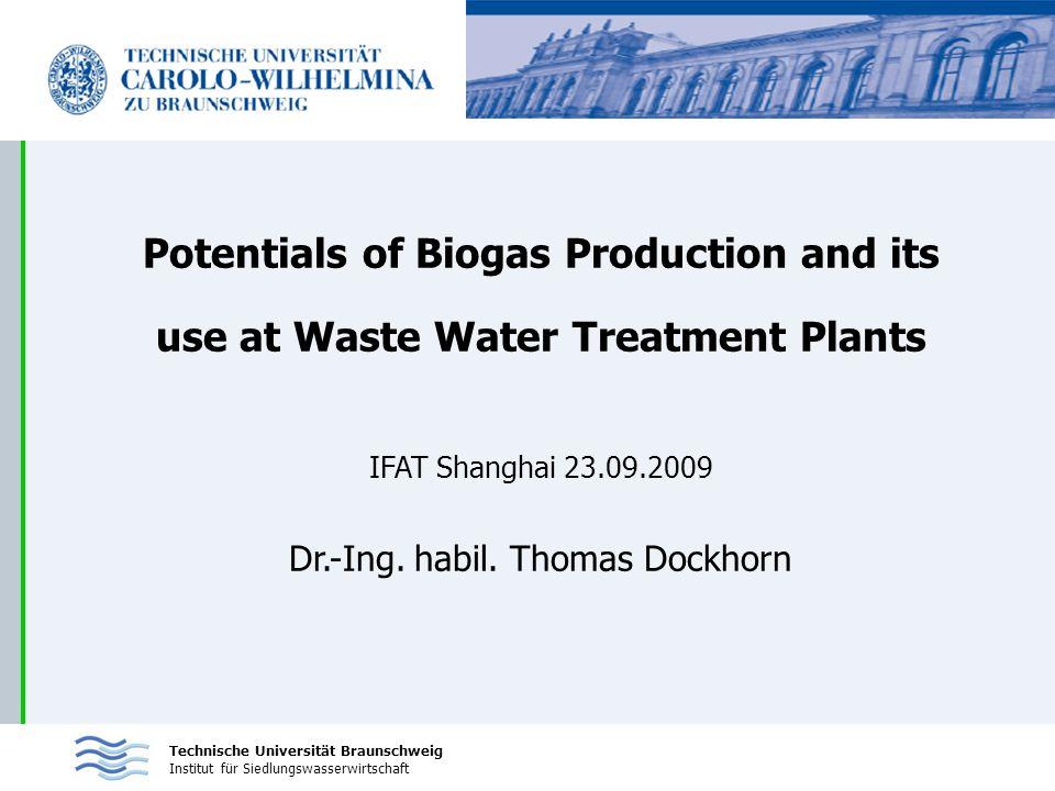 Dr.-Ing. habil. Thomas Dockhorn