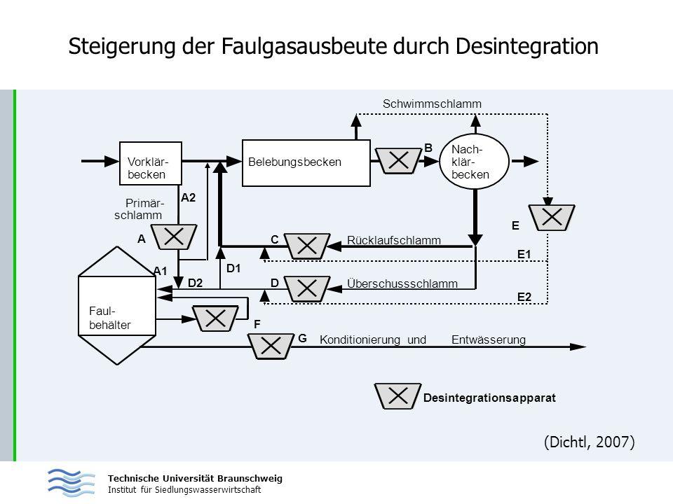 Steigerung der Faulgasausbeute durch Desintegration