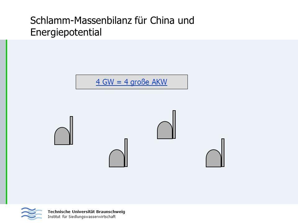 Schlamm-Massenbilanz für China und Energiepotential
