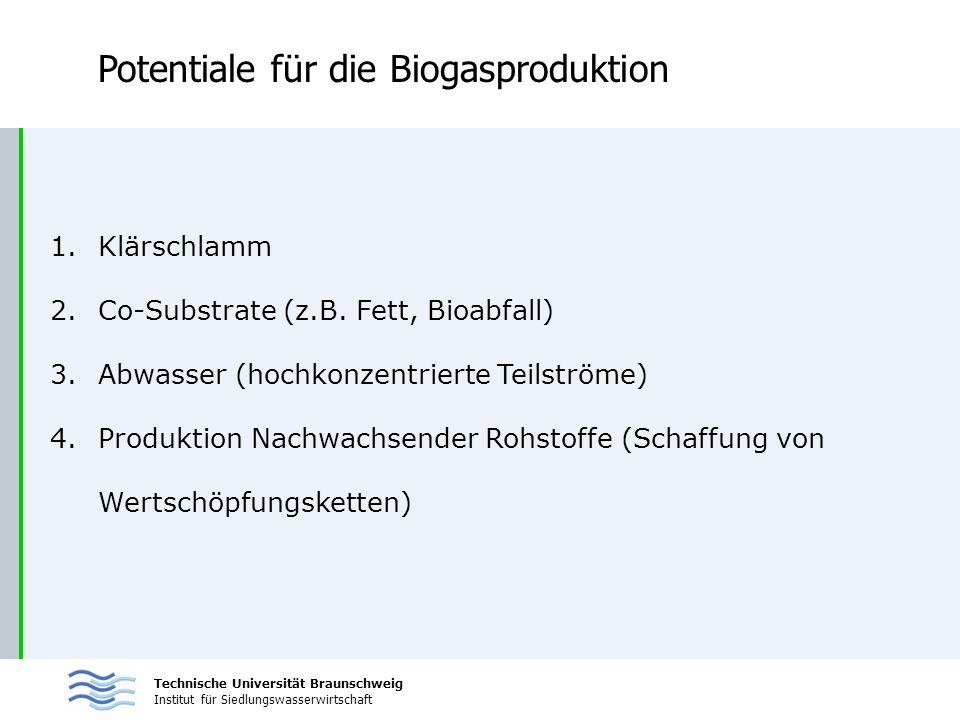 Potentiale für die Biogasproduktion