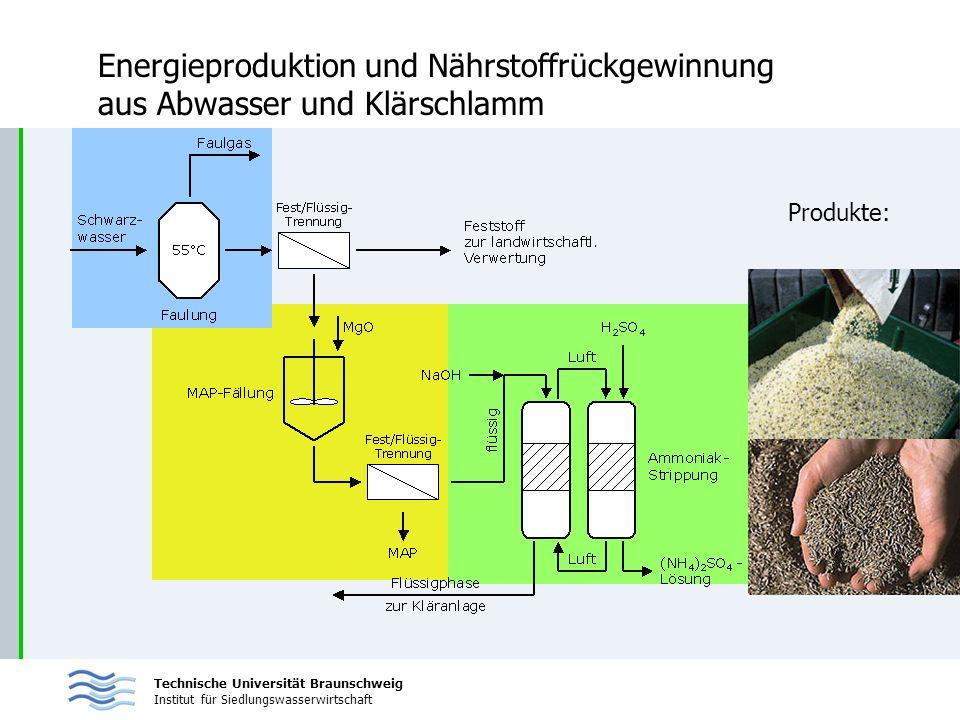 Energieproduktion und Nährstoffrückgewinnung aus Abwasser und Klärschlamm