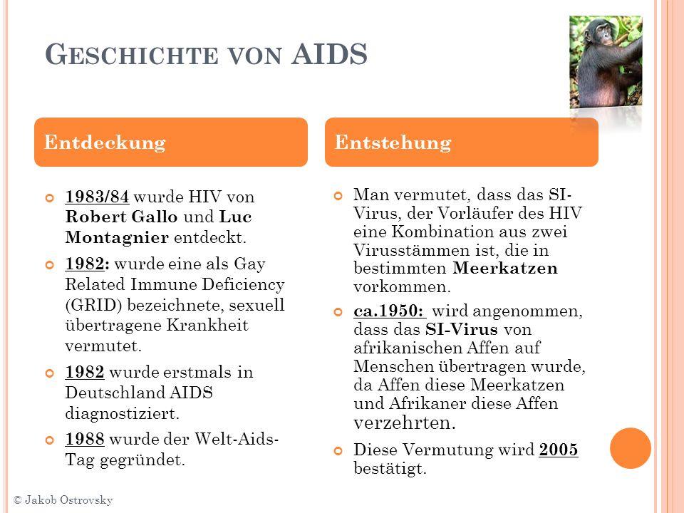 Geschichte von AIDS Entdeckung Entstehung