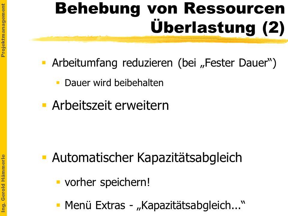 Behebung von Ressourcen Überlastung (2)