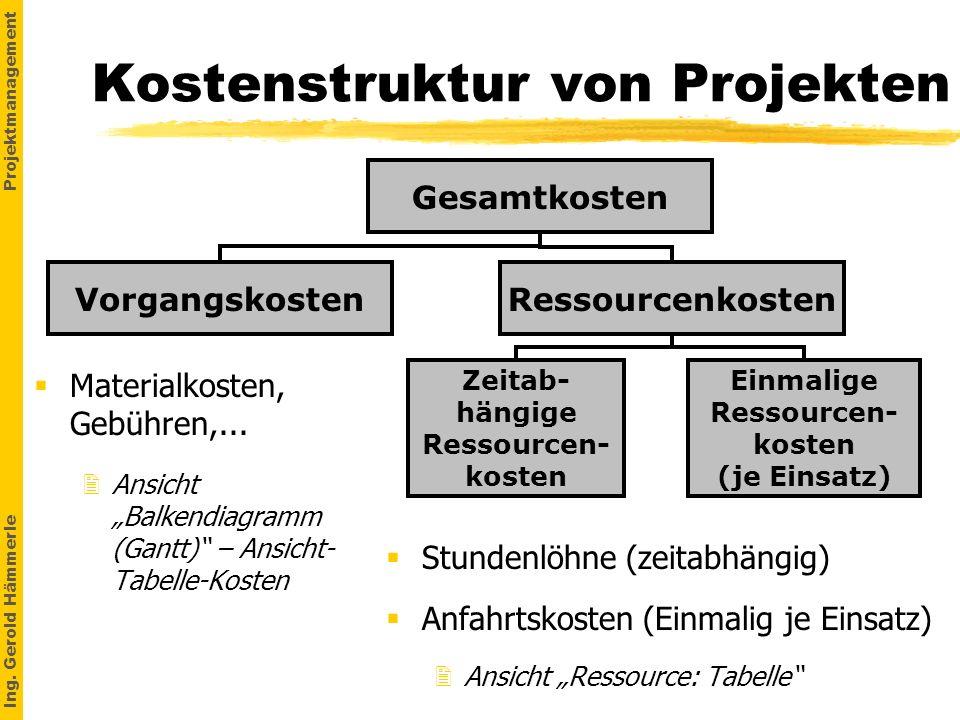 Kostenstruktur von Projekten