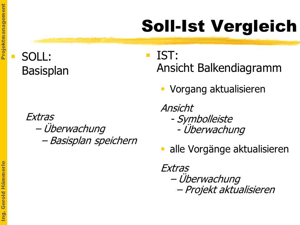 Soll-Ist Vergleich SOLL: Basisplan IST: Ansicht Balkendiagramm