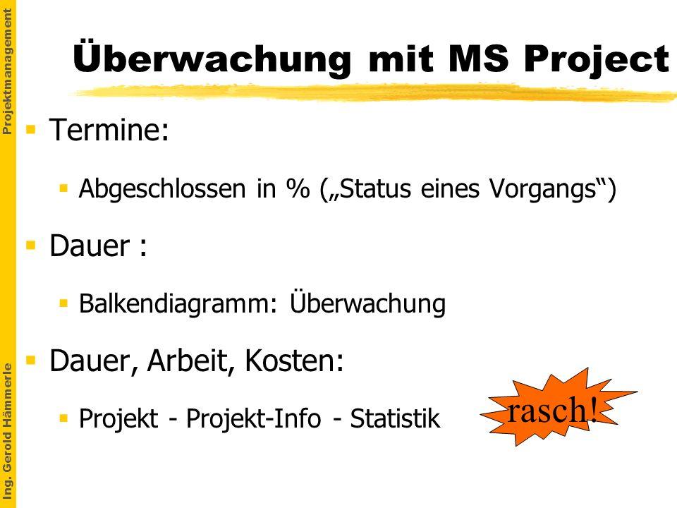 Überwachung mit MS Project
