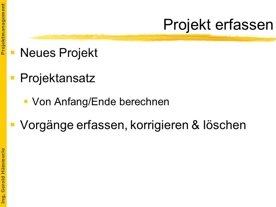 Projekt erfassen Neues Projekt Projektansatz