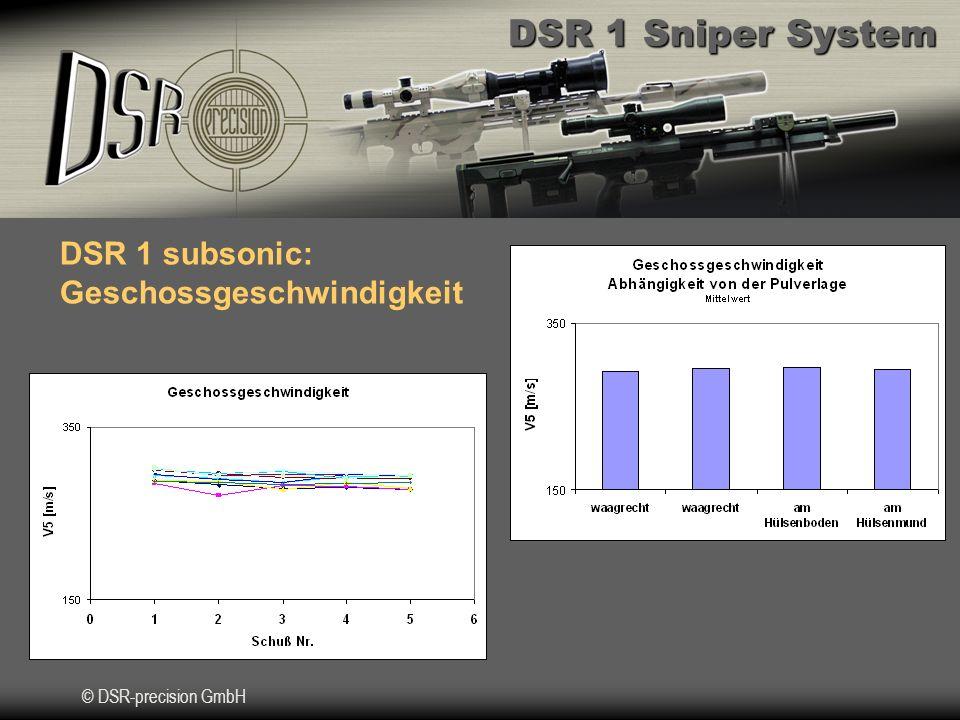 DSR 1 subsonic: Geschossgeschwindigkeit
