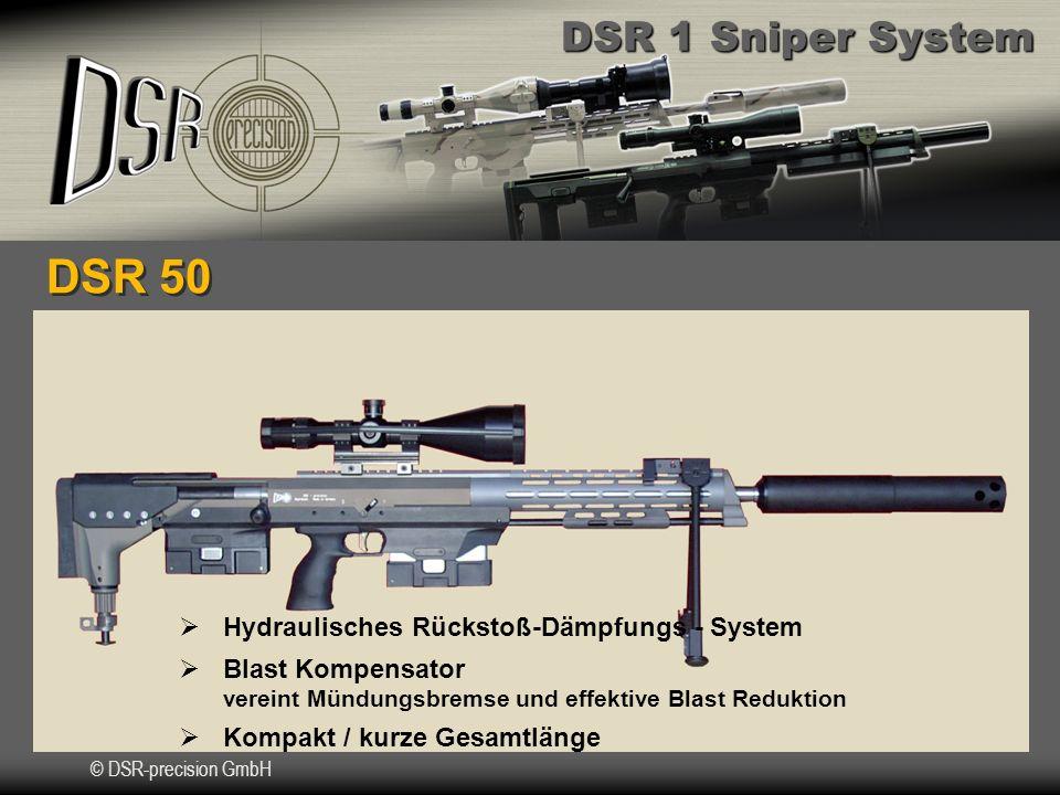 DSR 50 Hydraulisches Rückstoß-Dämpfungs - System