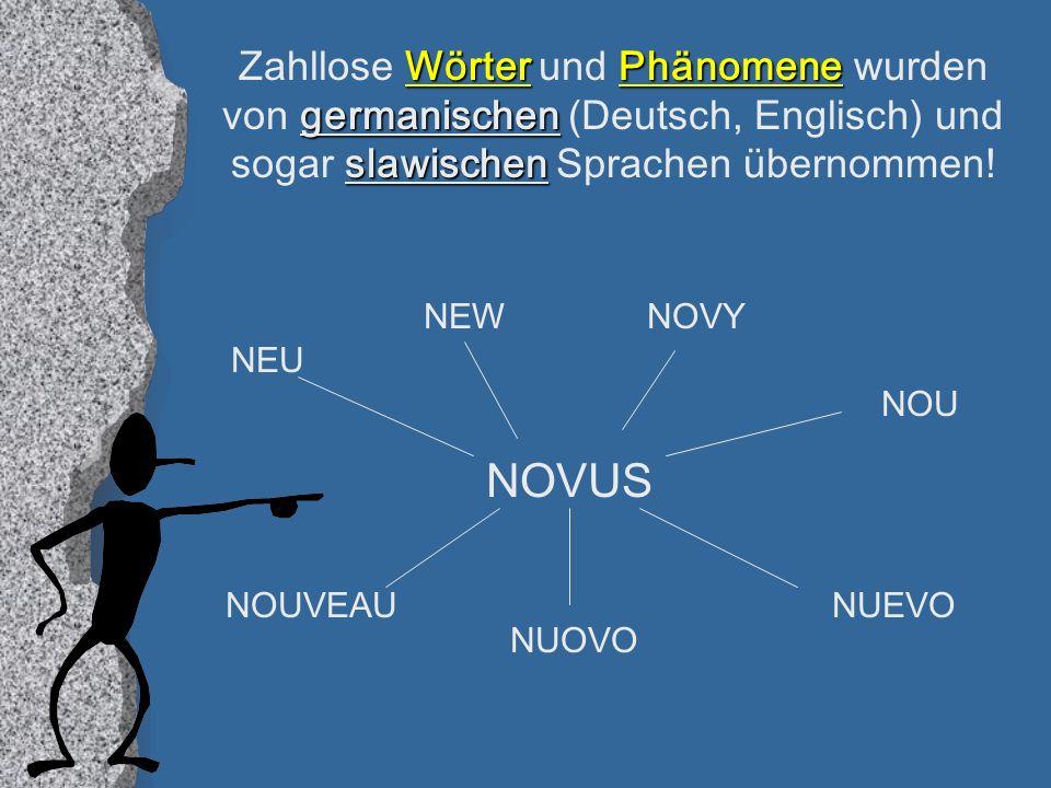 Zahllose Wörter und Phänomene wurden von germanischen (Deutsch, Englisch) und sogar slawischen Sprachen übernommen!