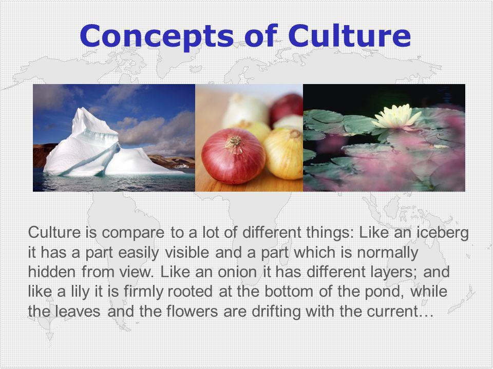 3838 Concepts of Culture.