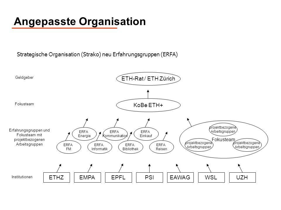 Angepasste Organisation