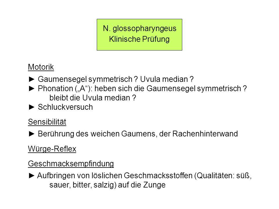 N. glossopharyngeus Klinische Prüfung. Motorik. ► Gaumensegel symmetrisch Uvula median