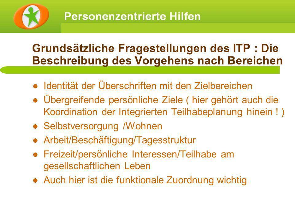 Grundsätzliche Fragestellungen des ITP : Die Beschreibung des Vorgehens nach Bereichen