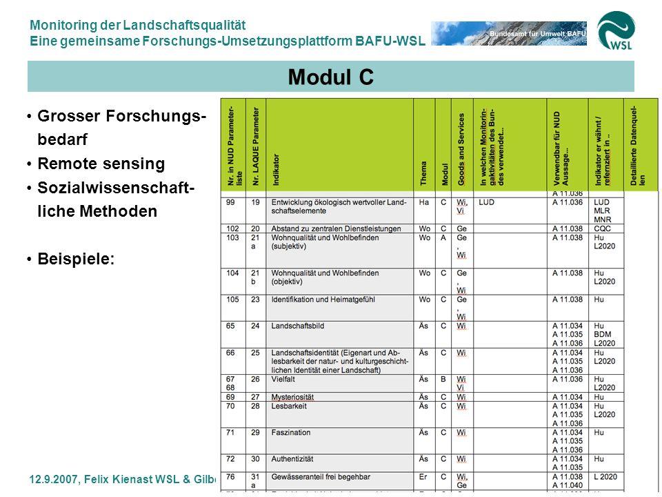 Modul C Grosser Forschungs-bedarf Remote sensing