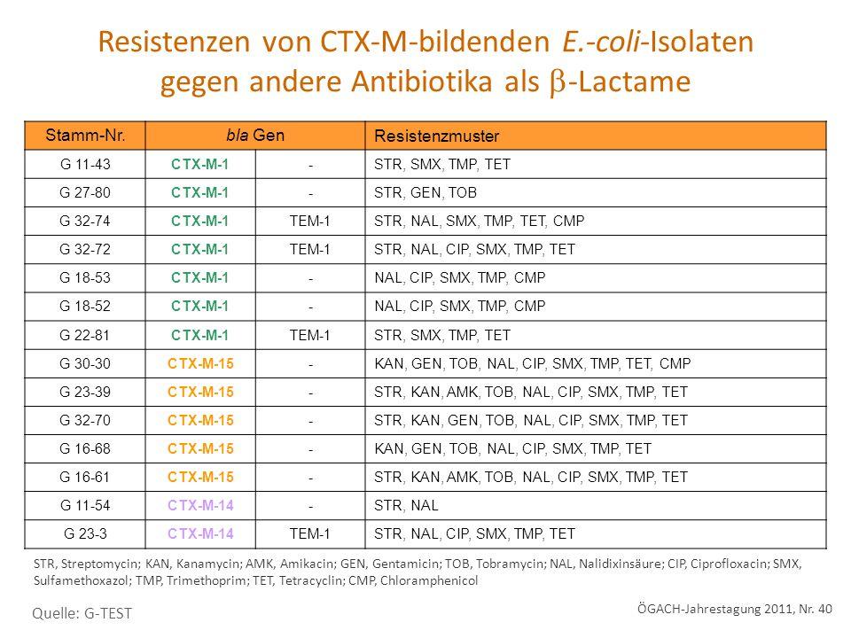 Resistenzen von CTX-M-bildenden E