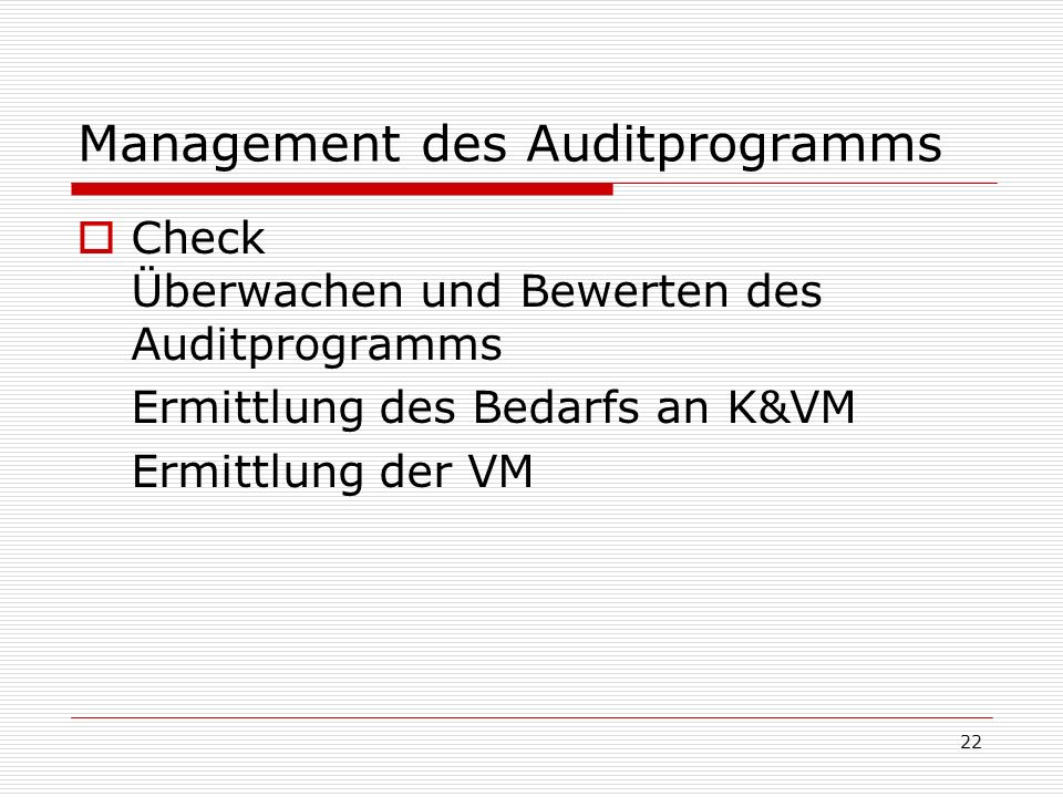 Management des Auditprogramms
