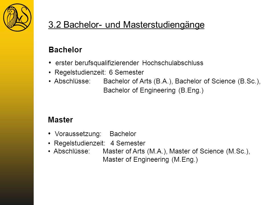 3.2 Bachelor- und Masterstudiengänge