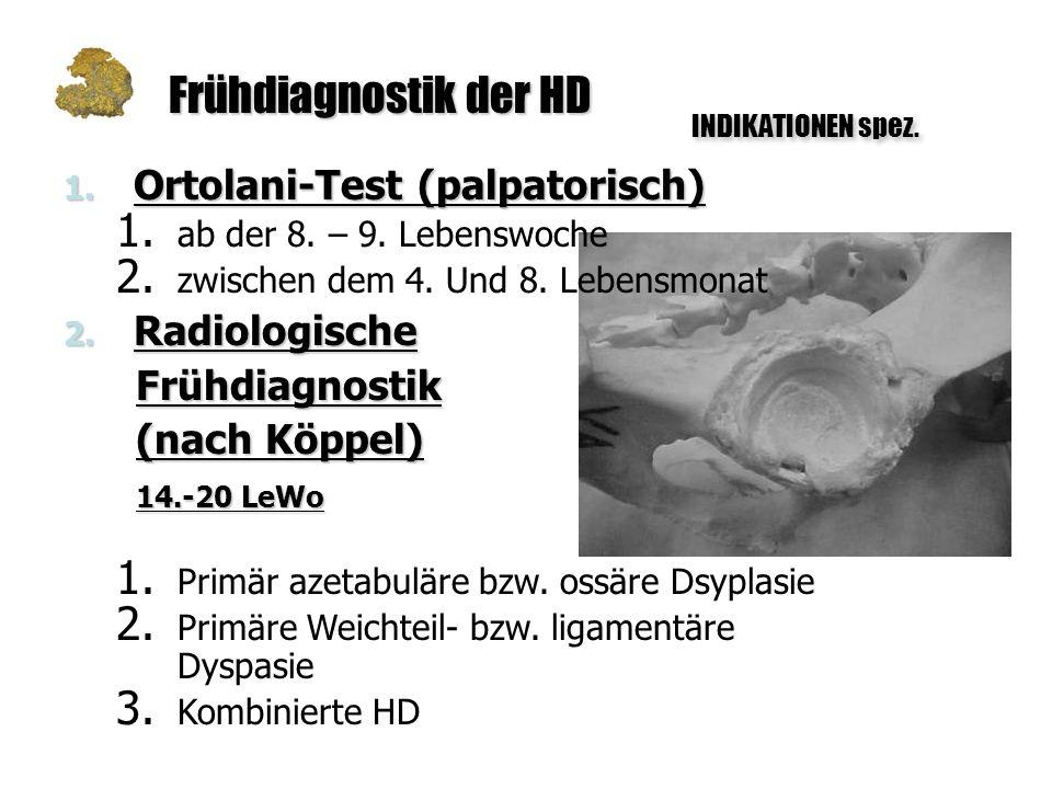 Frühdiagnostik der HD Ortolani-Test (palpatorisch) Radiologische