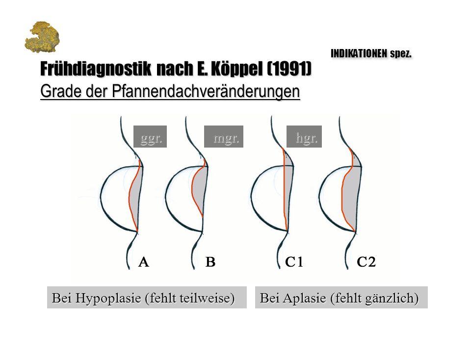 Frühdiagnostik nach E. Köppel (1991)
