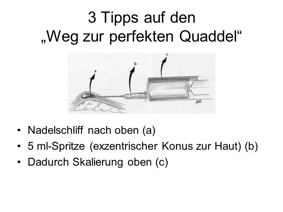"""3 Tipps auf den """"Weg zur perfekten Quaddel"""