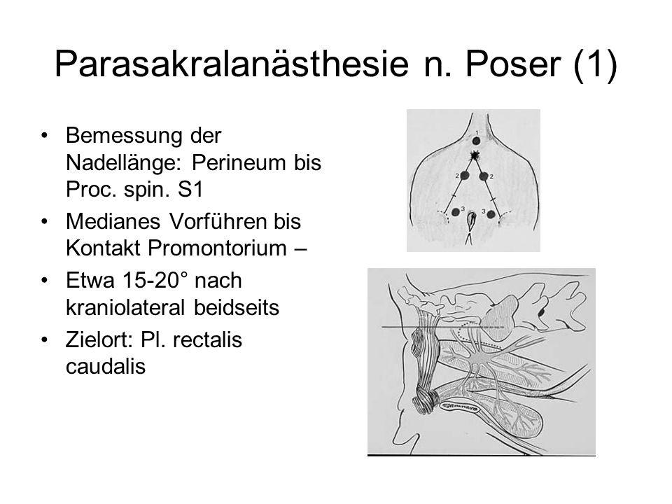 Parasakralanästhesie n. Poser (1)