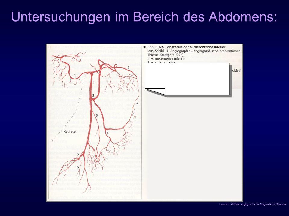 Untersuchungen im Bereich des Abdomens: