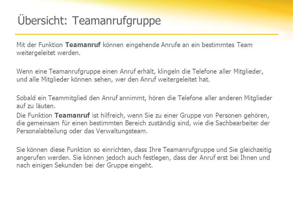 Übersicht: Teamanrufgruppe