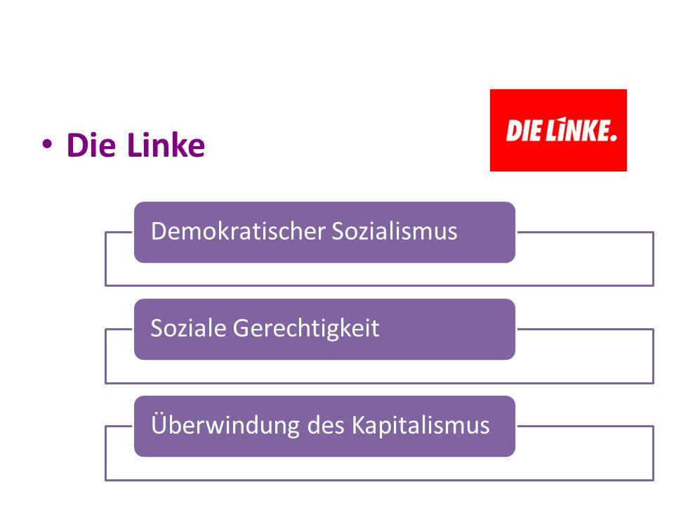 Die Linke Demokratischer Sozialismus Soziale Gerechtigkeit