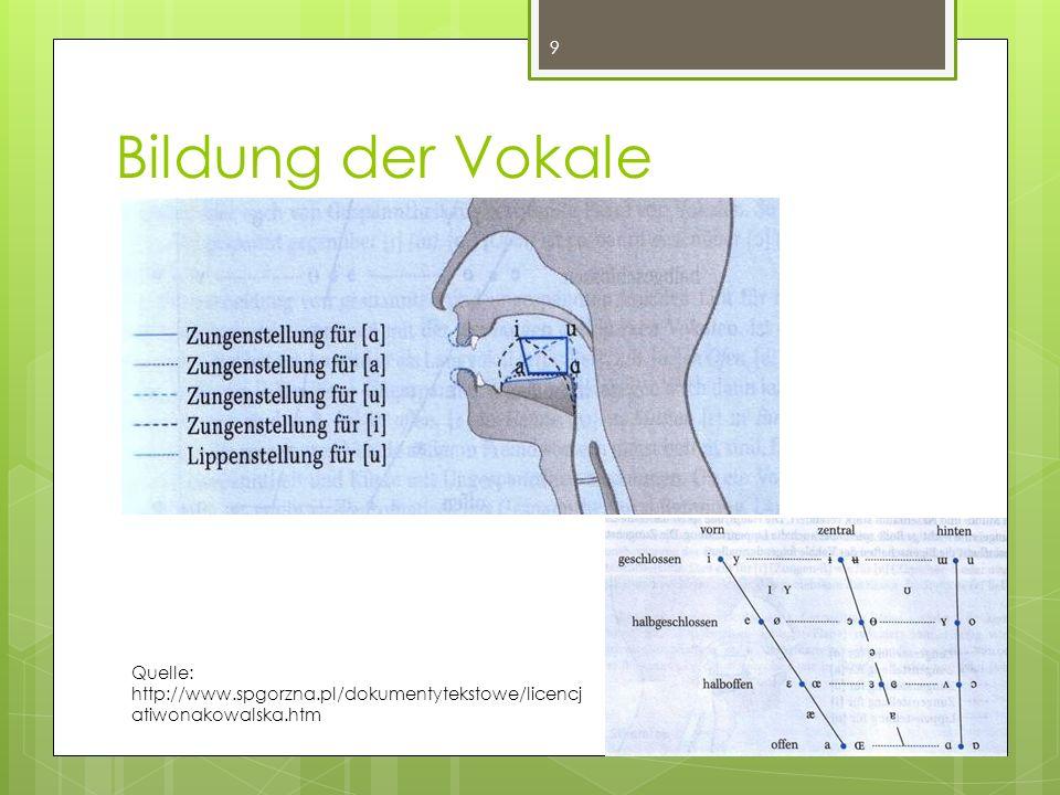 Bildung der Vokale Quelle: http://www.spgorzna.pl/dokumentytekstowe/licencjatiwonakowalska.htm