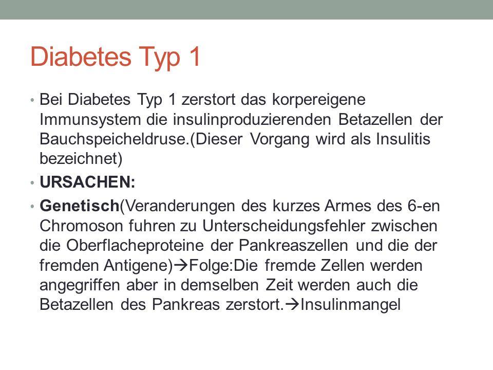 Diabetes Typ 1