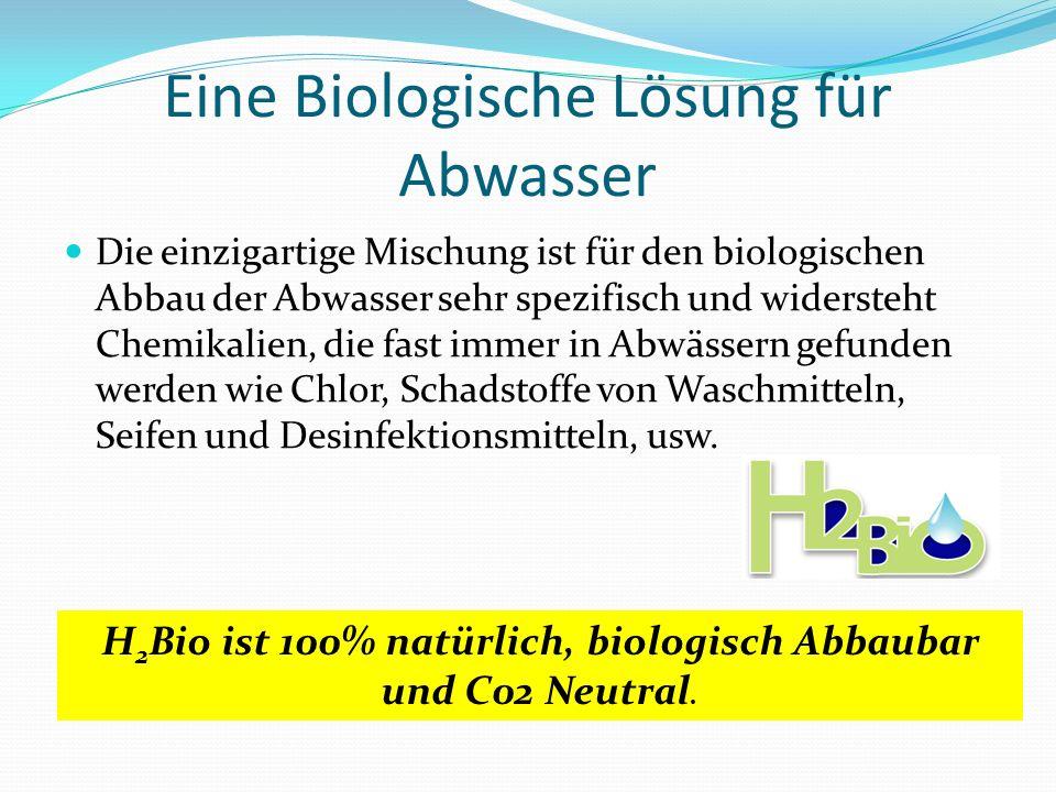 Eine Biologische Lösung für Abwasser