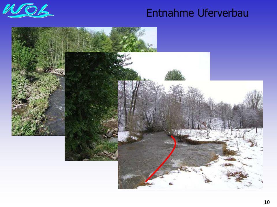 Entnahme Uferverbau
