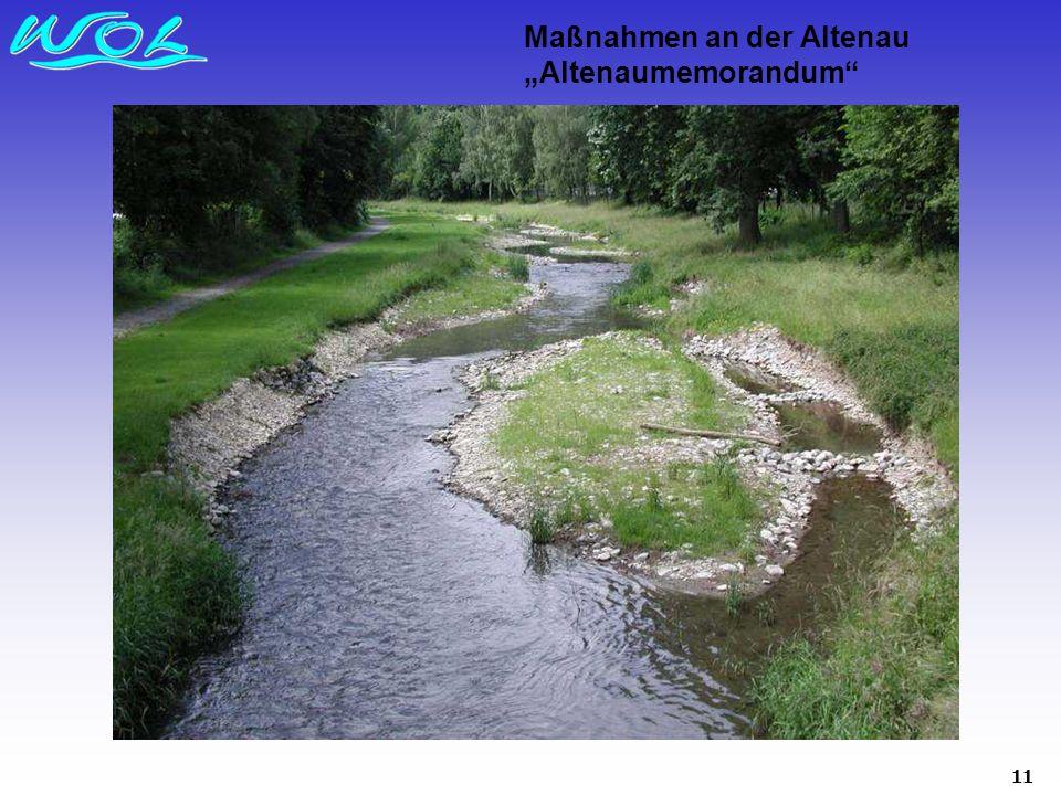 "Maßnahmen an der Altenau ""Altenaumemorandum"