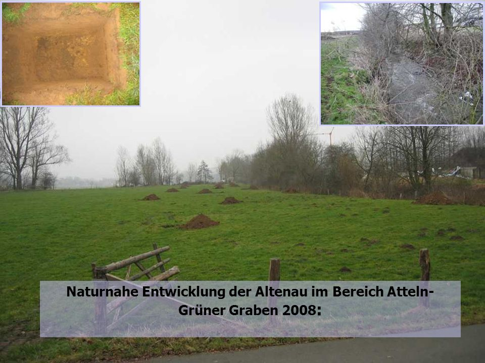 Naturnahe Entwicklung der Altenau im Bereich Atteln-Grüner Graben: