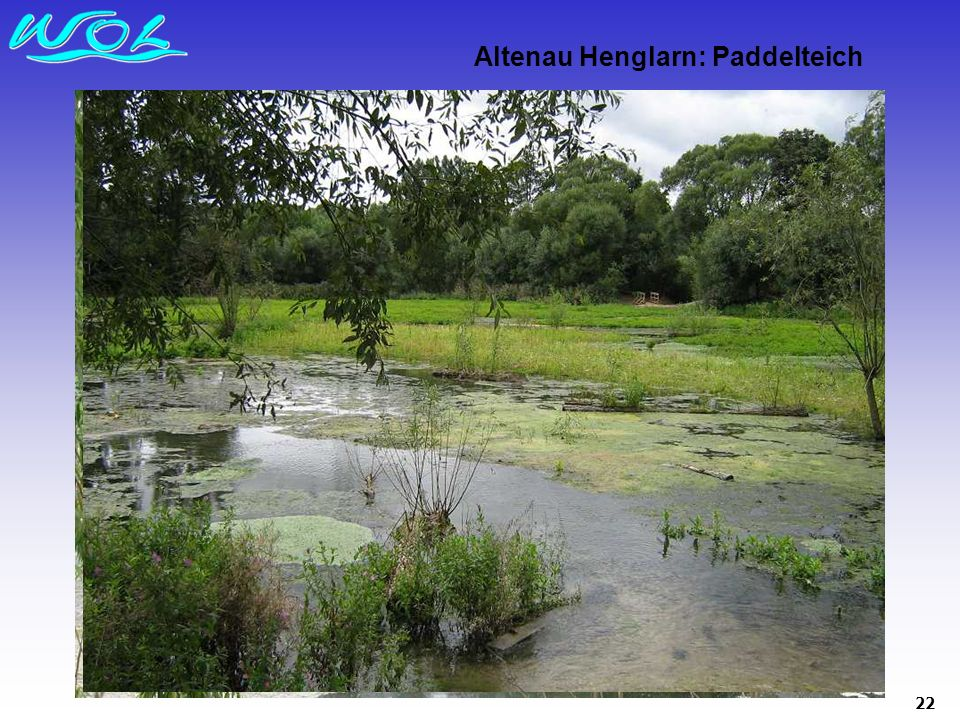 Altenau Henglarn: Paddelteich