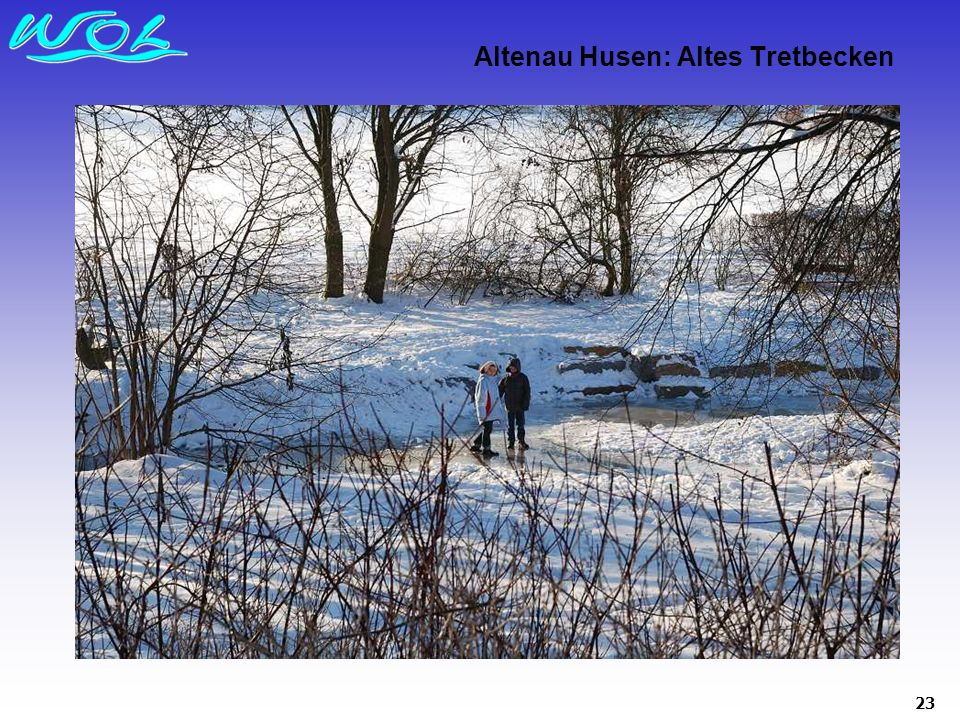 Altenau Husen: Altes Tretbecken