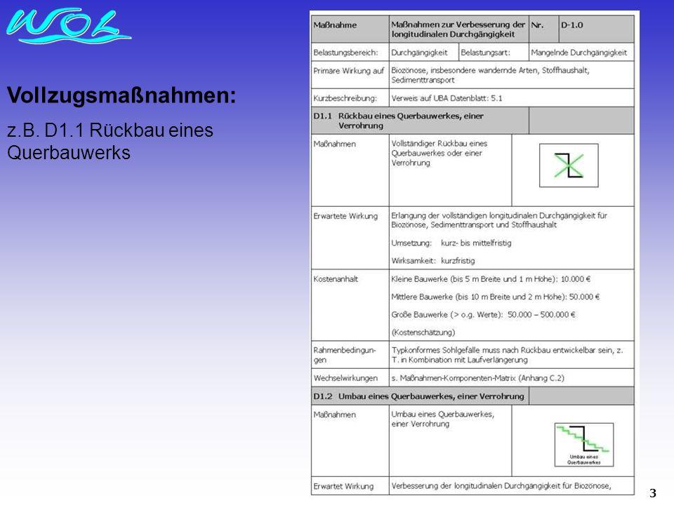 Vollzugsmaßnahmen: z.B. D1.1 Rückbau eines Querbauwerks